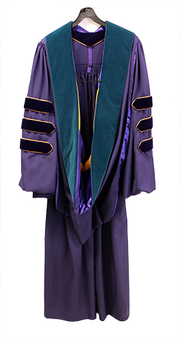 Purchase Doctor of Physical Therapy Hood