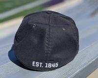 NIKE SWOOSH FLEX CAP